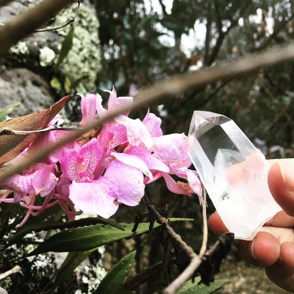cuarzo y orquídea – copia