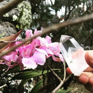 cuarzo y orquídea - copia